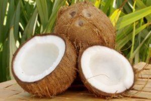 Kokosproducten